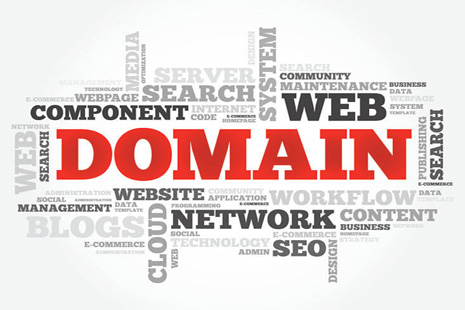 cara cek umur domain